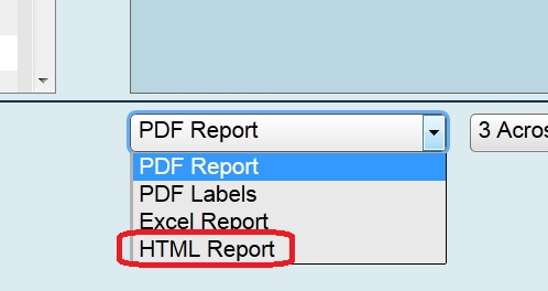 screen capture shows the HTML option for reporting