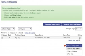 form submital options - e-file or mail