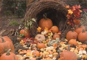 Cornucopia filled with pumpkin and squash.