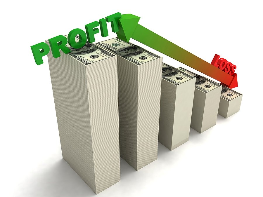 Profit and loss chart showing a business model that is different than a nonprofit's model.