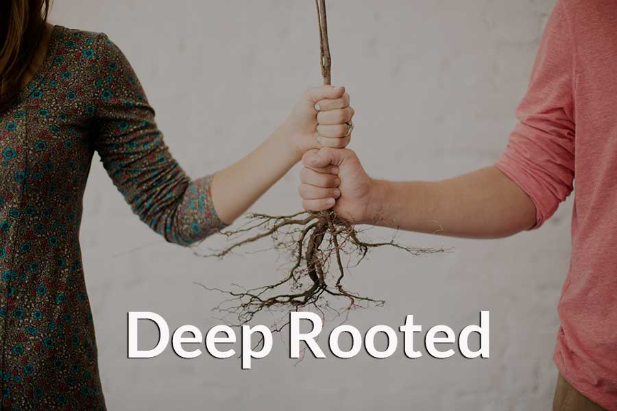 Two people holding the roots of a tree to demonstrate deep roots.